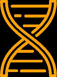 Excelente genética